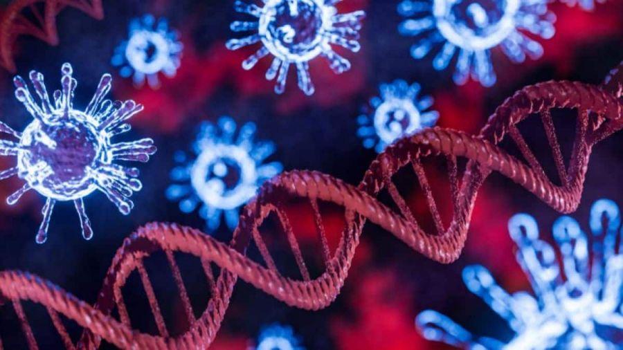 Nova substância pode frear o vírus causador da Covid-19